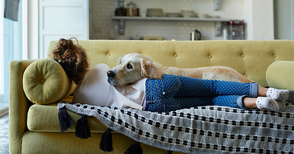 Why Pet-Friendly Homes Are in High Demand | Bridge Builders