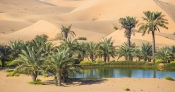 Your House Could Be the Oasis in an Inventory Desert | Bridge Builders